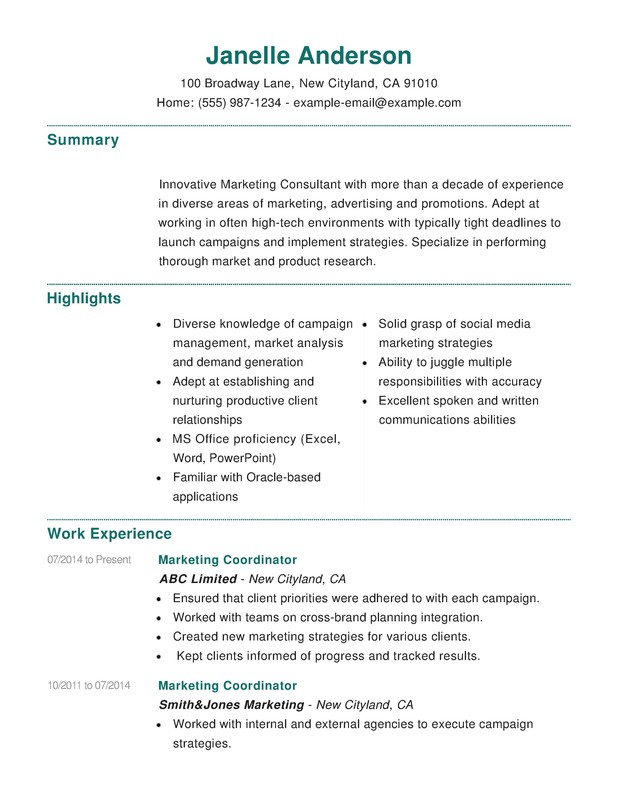 marketing combination resume - Sample Combination Resume